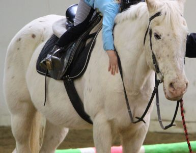 A young girl is slouched over on top of a white horse she is riding, arms wrapped around the horse's neck.